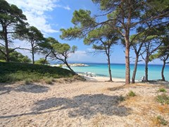 Beautiful greek beach panorama.Halkidiki