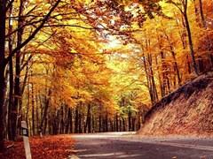 holomontas_mountain_Halkidiki