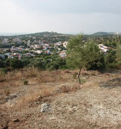 Land 7230 m² in Sithonia, Chalkidiki