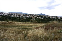 Land 6660 m² in the suburbs of Thessaloniki