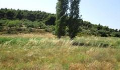 Земельна ділянка 6533 m² на Сітонії (Халкідіки)