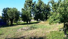 Zemljište 600 m² na Kasandri (Halkidiki)