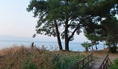 地皮 1580 m² 位于萨索斯岛