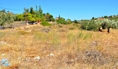 زمین 4700 m² در آتیکا