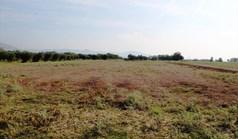 地皮 11600 m² 位于塞萨洛尼基