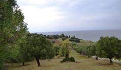 Działka 8404 m² na Kassandrze (Chalkidiki)