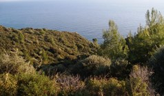 Land 6200 m² in Kassandra, Chalkidiki