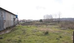زمین 1425 m² در آتوس (خالکیدیکی)