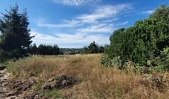 地皮 8919 m² 位于卡桑德拉(哈尔基季基州)
