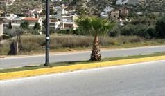 Zemljište 812 m² na Atici