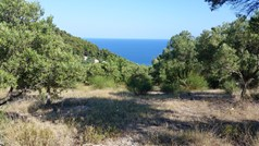 Land 9100 m² in Kassandra, Chalkidiki