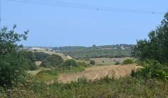 地皮 10500 m² 位于卡桑德拉(哈尔基季基州)