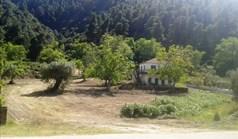 Земельный участок 4150 м² на Ситонии (Халкидики)