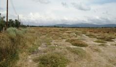 Земельный участок 12653 м² на Ситонии (Халкидики)