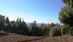 Land 9500 m² in Kassandra, Chalkidiki