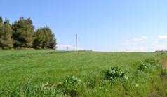 地皮 3330 m² 位于卡桑德拉(哈尔基季基州)