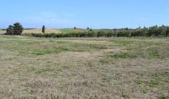زمین 6375 m² در کاساندرا (خالکیدیکی)