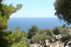 Land 30000 m² on the island of Thassos