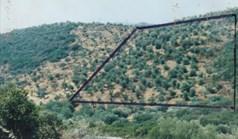 Zemljište 19160 m² na Sitoniji (Halkidiki)