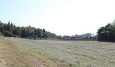 地皮 13500 m² 位于卡桑德拉(哈尔基季基州)