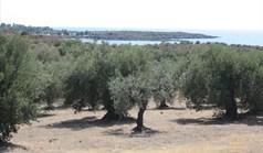 Zemljište 4070 m² na Sitoniji (Halkidiki)