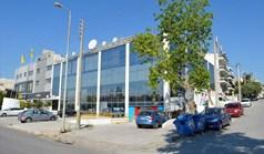 Business 2800 m² à Athènes