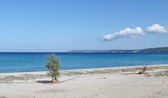 Land 18300 m² in Kassandra, Chalkidiki