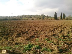 Land 29643 m² in Kassandra, Chalkidiki