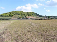 Land 7500 m² in Kassandra, Chalkidiki