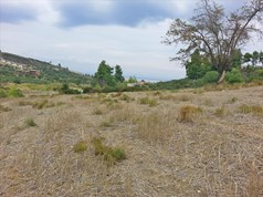 Land 15000 m² in Kassandra, Chalkidiki