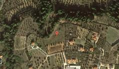 Земельный участок 5100 м² на Ситонии (Халкидики)