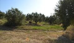 Zemljište 6500 m² na Kasandri (Halkidiki)