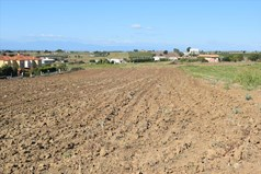 Land 6500 m² in the suburbs of Thessaloniki