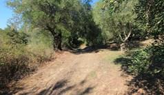 Земельный участок 5000 м² на о. Корфу