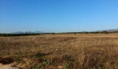 地皮 16600 m² 位于新马尔马拉斯(哈尔基季基州)