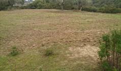 地皮 4024 m² 位于卡桑德拉(哈尔基季基州)