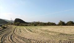 زمین 6350 m² در کاساندرا (خالکیدیکی)