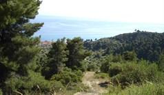 Land 4465 m² auf Kassandra (Chalkidiki)