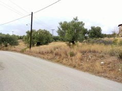 Land 6500 m² in Sithonia, Chalkidiki