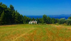 Land 8000 m² in Kassandra, Chalkidiki