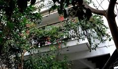 公寓 80 m² 位于雅典