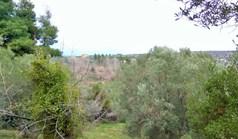 Terrain 4500 m² à Sithonia (Chalcidique)