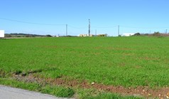 أرض 6700 m² في کاساندرا (هالكيديكي)