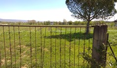 Land 18500 m² in the suburbs of Thessaloniki