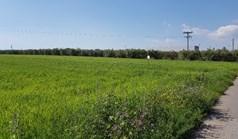 Земельна ділянка 16856 m² в Халкидіках