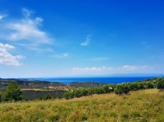 Land 6000 m² in Kassandra, Chalkidiki