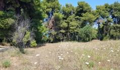 Zemljište 8500 m² na Kasandri (Halkidiki)