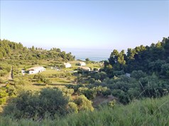 Land 4300 m² in Kassandra, Chalkidiki
