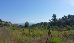 زمین 9000 m² در کاساندرا (خالکیدیکی)