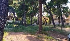 Terrain 455 m² à Sithonia (Chalcidique)